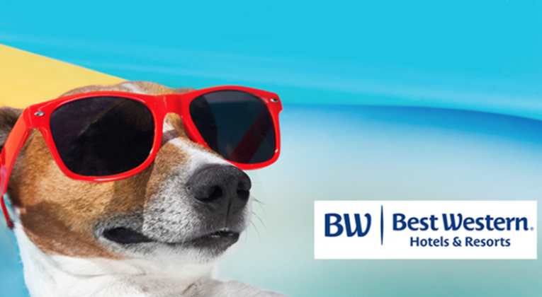 Best Western Dream Dog Vacation Sweepstakes